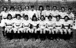 1945 Grand Rapids Chicks